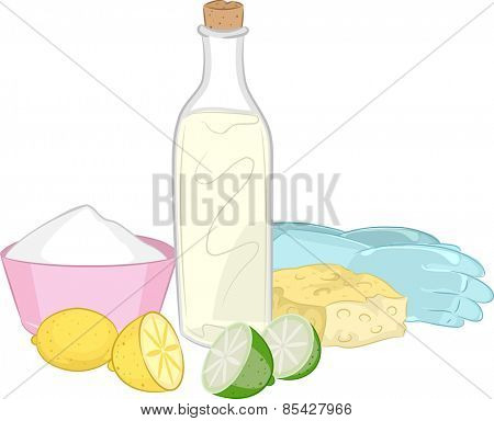 Illustration of a Group of Common Natural Cleaning Ingredients