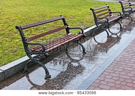 Wet Benches After The Rain