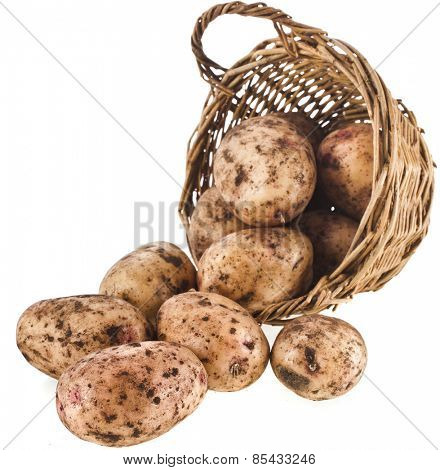 fresh potatoes in a wicker basket isolated on white background