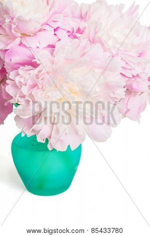 Pink peonies in a teal colored glass vase on white.