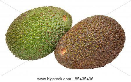 Ripe And Unripe Avocado Pears