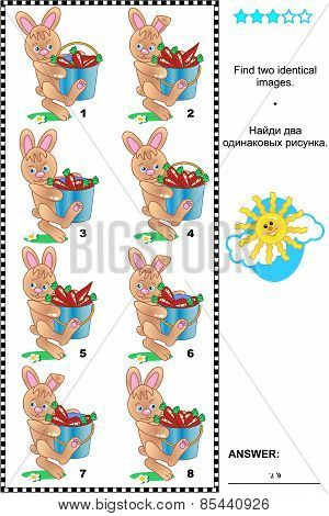 Picture riddle - find two identical images of bunnies and carrots