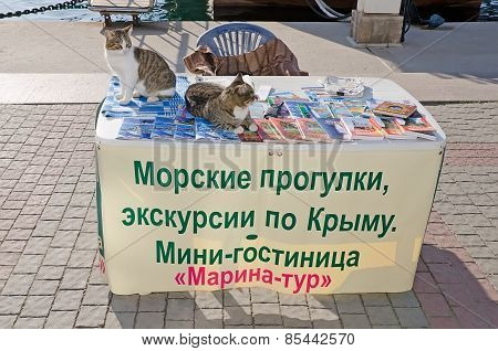 Two Cats Are En Table Seller Tourist Excursions On The Waterfront In Balaklava
