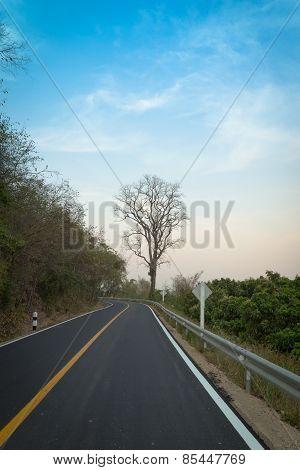 Asphalt Road ,countryside Road