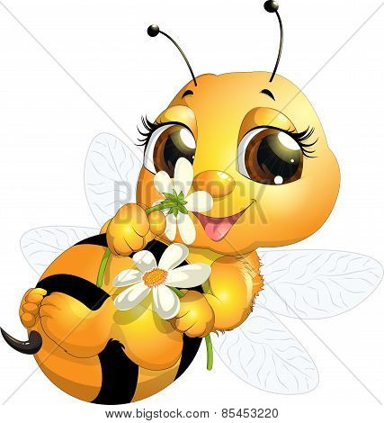 beautiful bee