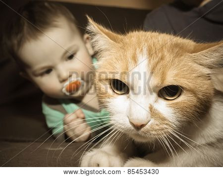 Caucasian Baby Playing With Cat