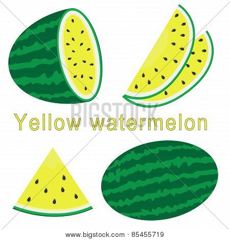 set of watermelon with sign, flat style