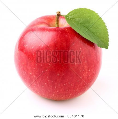 Apple in closeup