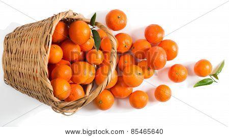 Mandarines Spilling Out Of A Basket