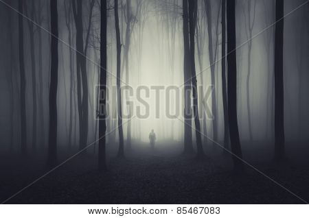 Haunted forest on Halloween