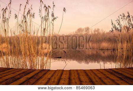 Bridge By An Idyllic Lake