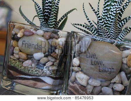 Cactus plant message