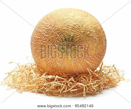 Melon Organic, Fresh, Juicy, Yellow On Straw On A White Background. Closeup Food