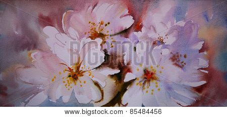Watercolor Painting Of The Beautiful Flowers