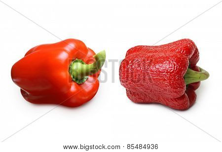 Wrinkled and fresh pepper isolated on white background. Aging concept.