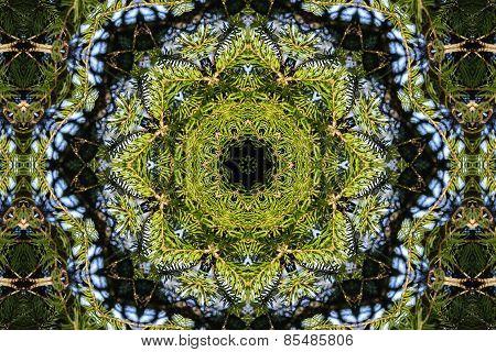 Green Kaleidoscopic Patterns