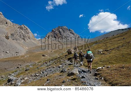 Group Of Trekkers In The Fany Mountain