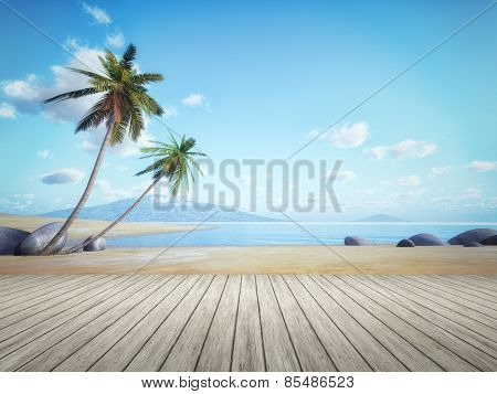 An image of a beautiful palm tree beach