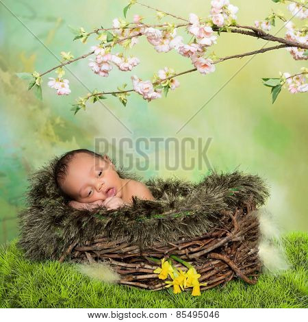 Cute little african baby in a nest in front of easter or springtime background