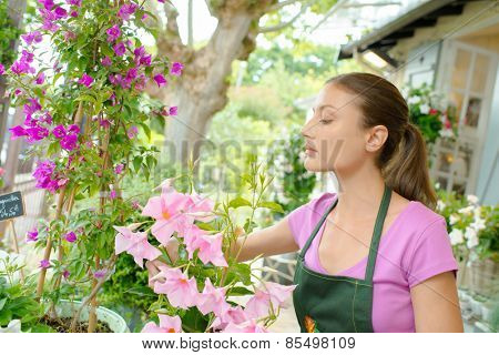 Florist working in her lovely boutique