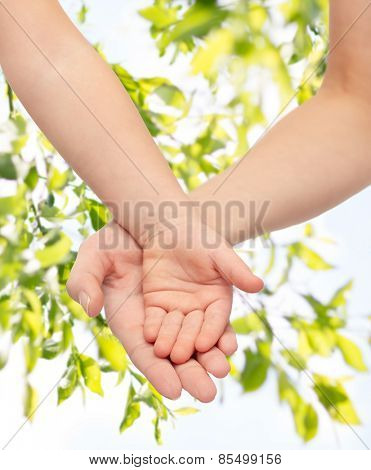 people, charity, family, children and advertisement concept - close up of woman and little child hands holding empty palms over green tree leavers background