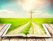 stock photo of bible story  - Open book with grass and a way walking towards a cross - JPG