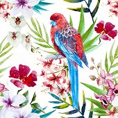 stock photo of tropical birds  - Beautiful vector pattern with watercolor tropical bird and flowers - JPG
