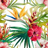 image of jungle flowers  - Beautiful vector pattern with watercolor tropical sterlitzia - JPG
