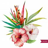 stock photo of jungle flowers  - Beautiful vector illustration with nice tropical flowers - JPG