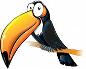 picture of toucan  - fun toucan cartoon isolated on white background art and illustration - JPG