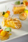image of halibut  - Salmon and Halibut Fillet with Citrus Mix - JPG