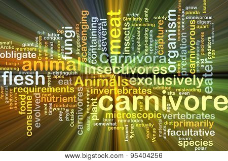 Background concept wordcloud illustration of carnivore glowing light