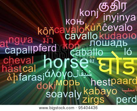 Background concept wordcloud multilanguage international many language illustration of horse glowing light