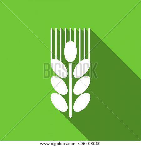 grain flat icon agriculture sign original modern design green flat icon for web and mobile app with long shadow