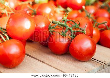 Fine ripe tomatoes