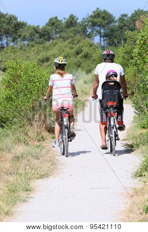 Back view of family riding bikes on a summer day