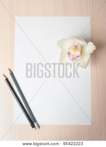 White tropical orchid flower on paper