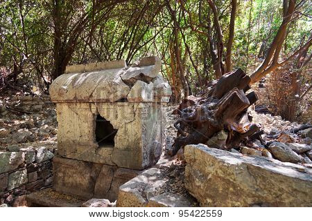 Old tomb at Olympos in Turkey - travel background
