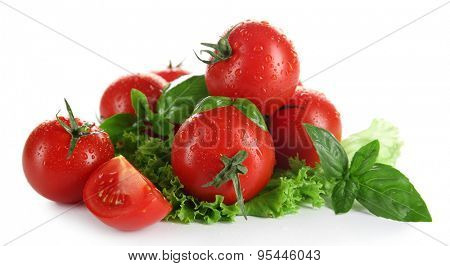 Cherry tomatoes with basil and lettuce close up