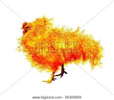 flame rooster isolated on white background