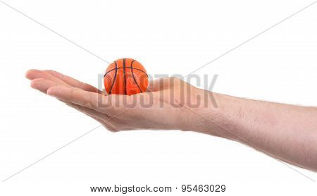Small Toy Basketball Ball