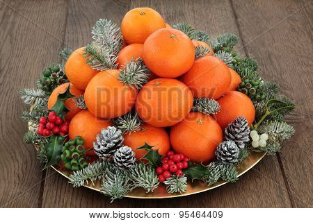 Christmas satsuma tangerine orange fruit, holly,mistletoe, ivy and spruce pine fir with snow over oak background.
