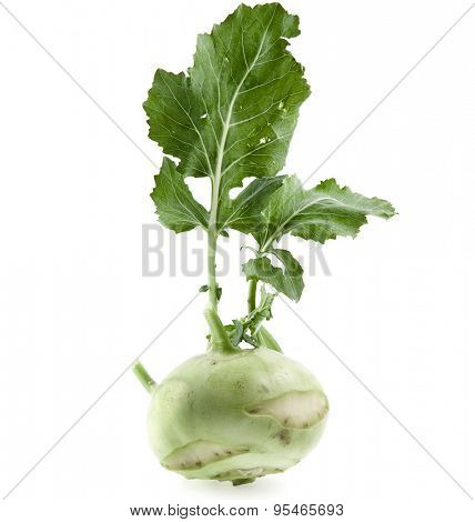 kohlrabi cabbage isolated on white background