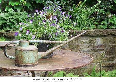 Vintage watering can on a patio table surrounded by pansies.