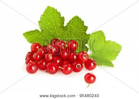 heap of redcurrant berries with their leaves isolated on white