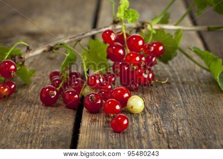 Closeup of redcurrant branch with ripe fruit on rustic wooden table