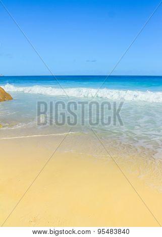 Ideal Summer Waves