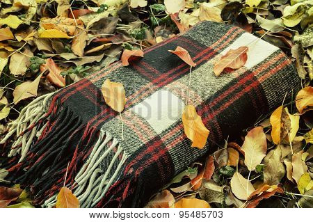 Warm And Cozy Blanket For Relaxing In The Forest.