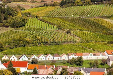 wine cellars with vineyards, Falkenstein, Lower Austria, Austria