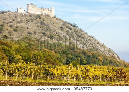 ruins of Devicky Castle with vineyard in autumn, Czech Republic
